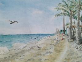 Mann_Dania_Beach